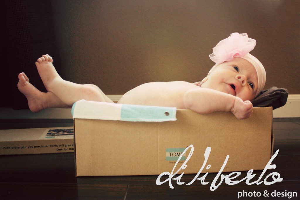 Diliberto Photo & Design Houston Newborn Photography
