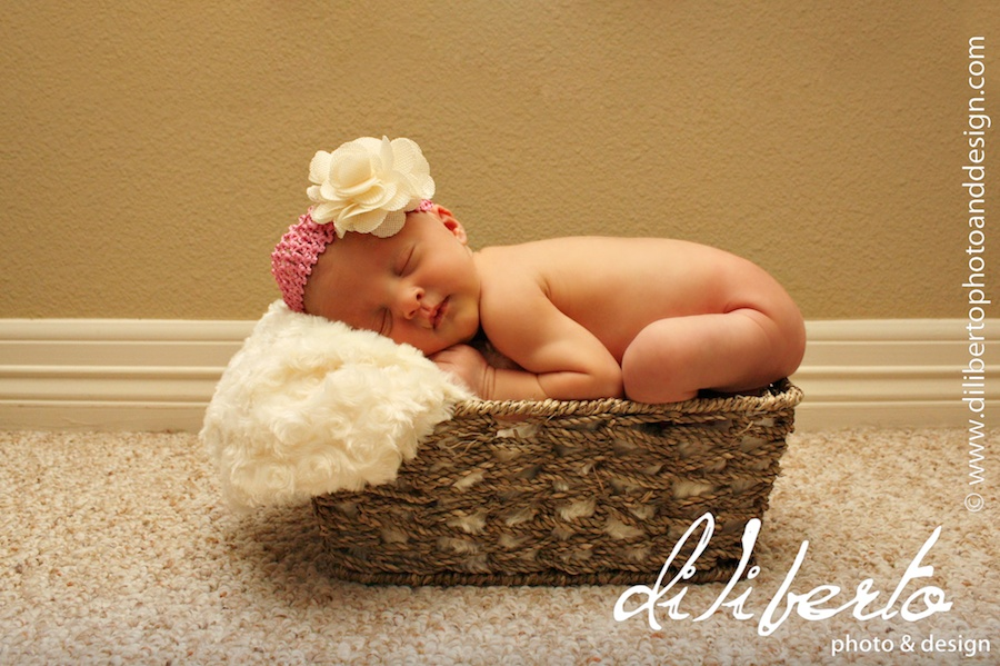 Newborn Photographer Spring, TX