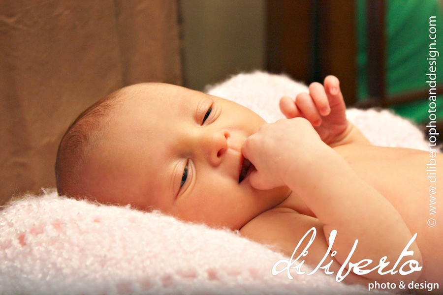 newborn baby photographer spring
